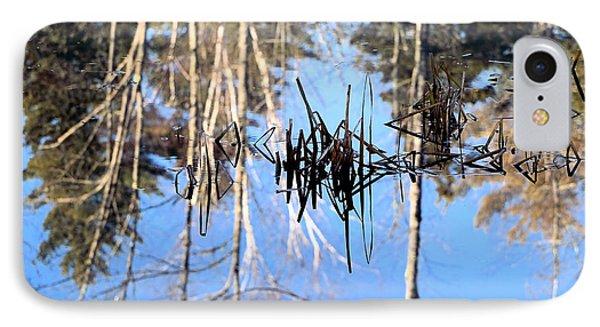 Winter Pond IPhone Case by Elizabeth Dow