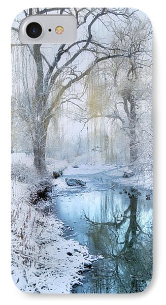 Winter Reflections In Blue IPhone Case