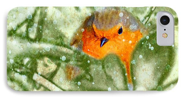 IPhone Case featuring the photograph Winter Robin by LemonArt Photography
