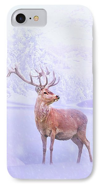 Winter Story IPhone Case by Iryna Goodall