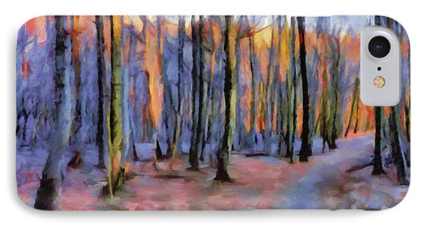 Winter Sunset In The Beech Wood IPhone Case by Menega Sabidussi