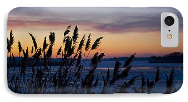IPhone Case featuring the photograph Winter Sunset  by Paula Guttilla