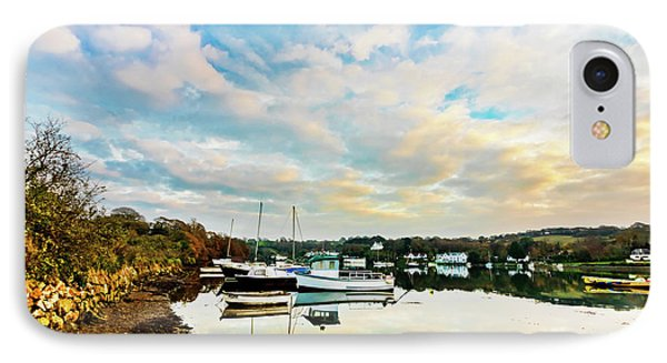 Winter Sunset IPhone Case by Terri Waters