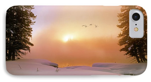 Winter Swans IPhone Case by Leland D Howard