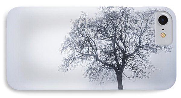 Winter Tree And Bench In Fog IPhone Case