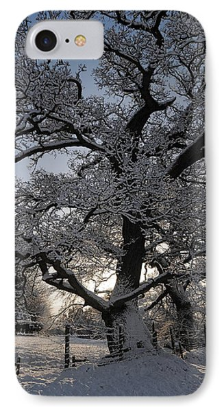 Winter Tree In North Wales IPhone Case