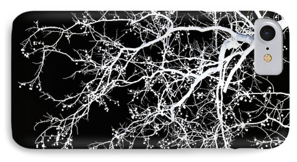 Winter Tree No. 69-2 IPhone 7 Case by Sandy Taylor