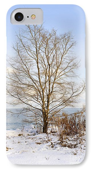 Winter Tree On Shore IPhone Case by Elena Elisseeva