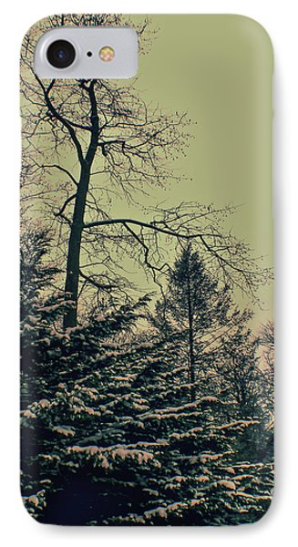 Winter Trees IPhone Case by Sandy Moulder