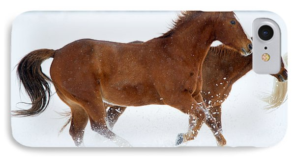 Winter Trot IPhone Case by Mike Dawson