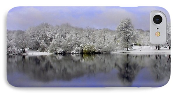 Winter View Phone Case by Karol Livote
