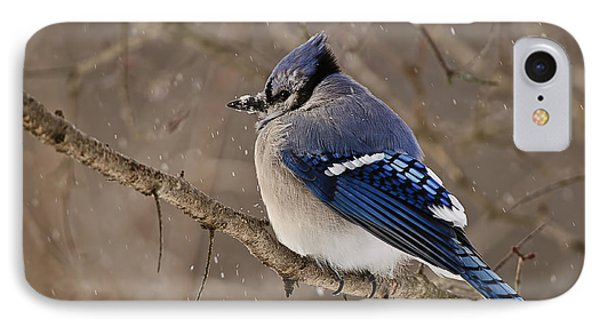 Winter Visitor Phone Case by Michael Cummings