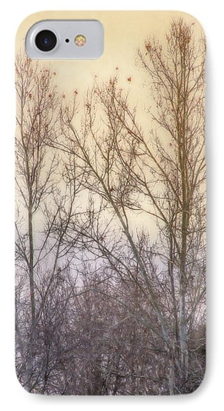 Winter Whisper In The Trees IPhone Case by Terry Davis