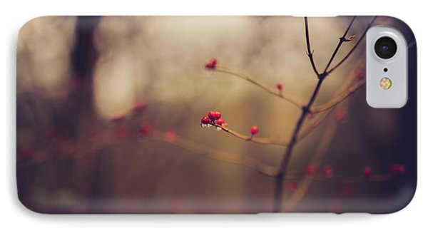 IPhone Case featuring the photograph Winter Whispers by Shane Holsclaw