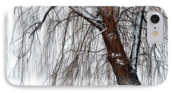 Winter Willow IPhone Case