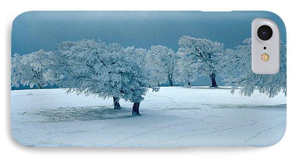 Winter Wonderland IPhone Case by Flavia Westerwelle