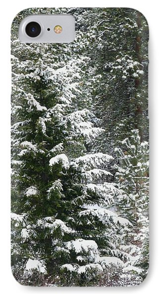 IPhone Case featuring the photograph Winter Woodland by Will Borden