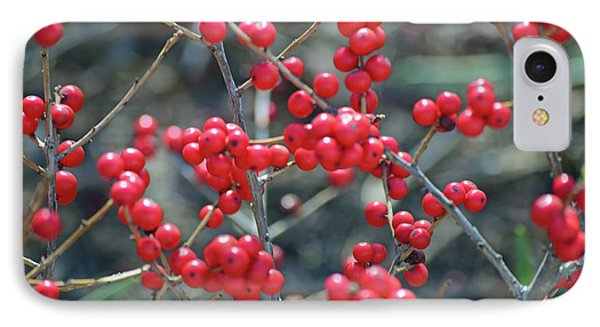 Winterberries IPhone 7 Case by Sandy Taylor
