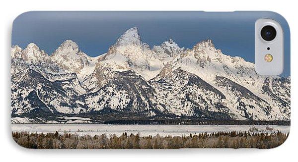 Winter's Majesty IPhone Case by Sandra Bronstein