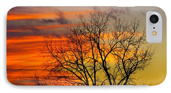 IPhone Case featuring the photograph Winter's Scene by Donald C Morgan