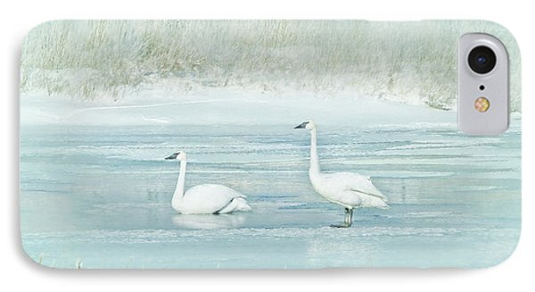 IPhone Case featuring the photograph Trumpeter Swan's Winter Rest Blue by Jennie Marie Schell
