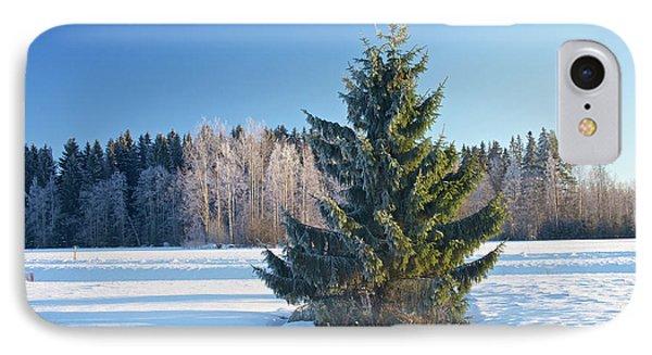 Wintry Fir Tree IPhone Case