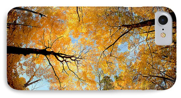 Wisconsin Canopy IPhone Case by Todd Klassy