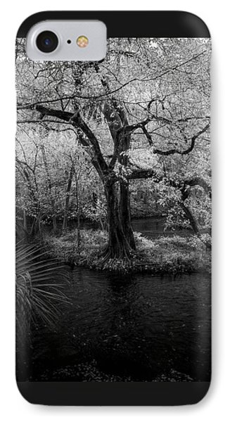 Wisdom Of A Tree IPhone Case by Marvin Spates