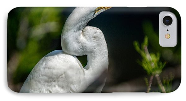 IPhone Case featuring the photograph White Egret 2 by Christopher Holmes
