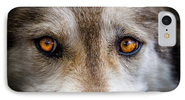 IPhone Case featuring the photograph Wolf Eyes by Teri Virbickis