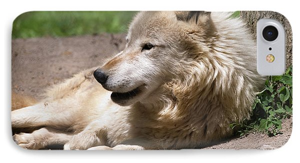 IPhone Case featuring the photograph Wolf by JT Lewis