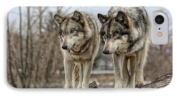 IPhone Case featuring the photograph Wolf Pair by Shari Jardina