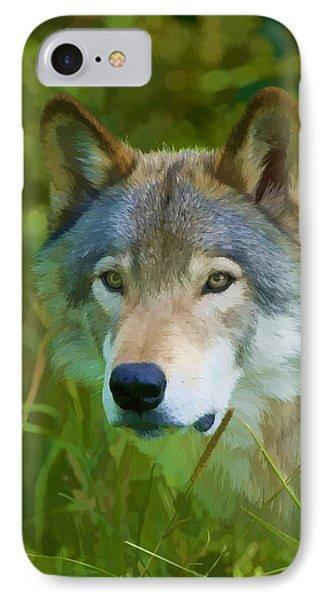 Wolf Portrait IPhone Case by Michael Cummings
