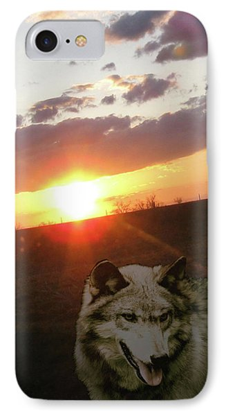 Wolf Sunset Phone Case by Debra     Vatalaro