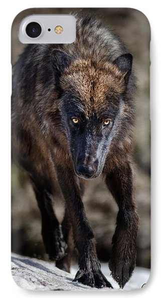 Wolf Tracking Me? IPhone Case by CR  Courson