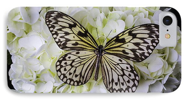 Wonderful Butterfly IPhone Case by Garry Gay