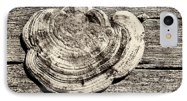 IPhone Case featuring the photograph Wood Decay Fungi, Nagzira, 2011 by Hitendra SINKAR