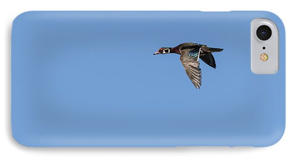 Wood Duck 2017-1 IPhone Case by Thomas Young