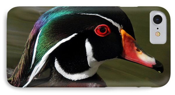 Wood Duck At Beaver Lake Stanley Park Vancouver Canada IPhone Case