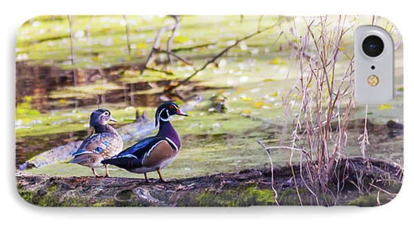 Wood Duck Couple IPhone Case