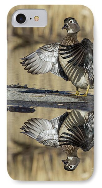IPhone Case featuring the photograph Wood Duck Reflection by Mircea Costina Photography