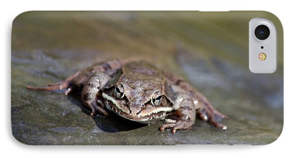 IPhone Case featuring the photograph Wood Frog Close Up by Christina Rollo