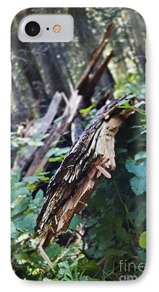 Wood In The Forest IPhone Case by Janie Johnson
