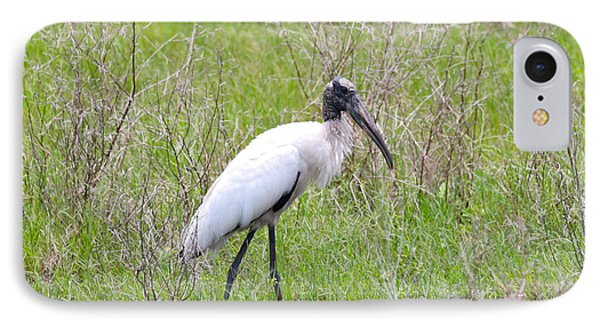 Wood Stork In The Marsh IPhone Case by Carol Groenen
