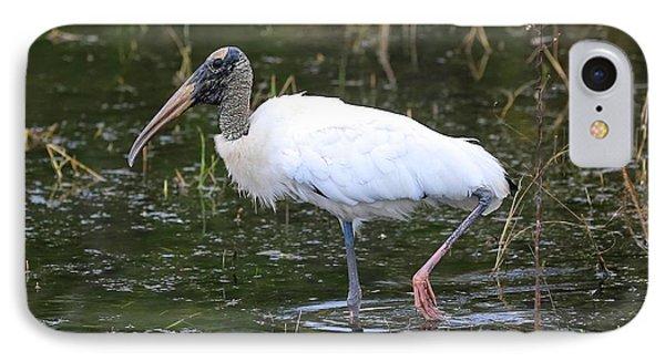Wood Stork Through The Marsh IPhone 7 Case by Carol Groenen