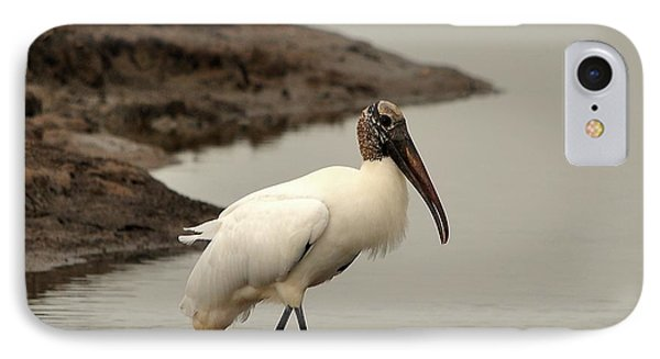 Wood Stork Walking IPhone Case by Al Powell Photography USA