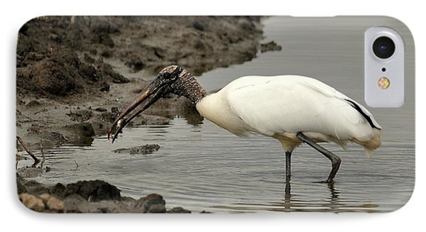 Wood Stork With Fish Phone Case by Al Powell Photography USA