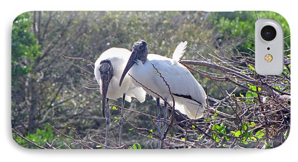 Wood Storks IPhone Case