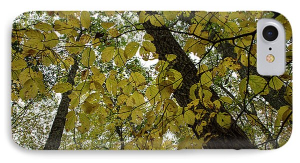 IPhone Case featuring the photograph Woodland Canopy by Andrew Pacheco