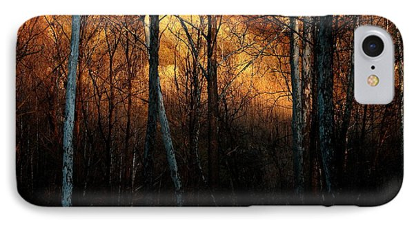 IPhone Case featuring the photograph Woodland Illuminated by Bruce Patrick Smith